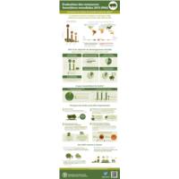 FAO - Infografie 2015 - Ressources Forestières Mondiales